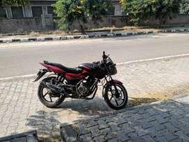 Pulser 150 cc black & red
