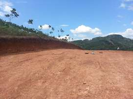 Land for sale in Punalur