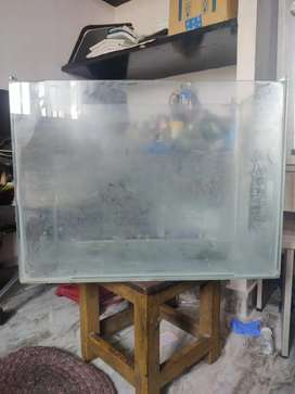 Big Fish tank, offer valid today only