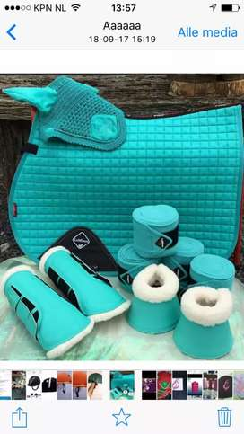 Horse Saddle pad matching set