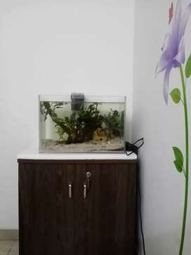 Aquarium on sell