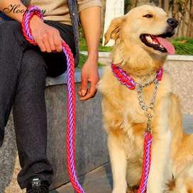 Dog Collar Leashes Harness Chain Bowls Brush