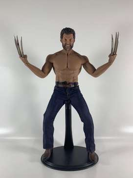 HOT TOYS 1/6 scale WOLVERINE ( LOGAN )