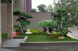 Tukang taman jual Rumput untuk taman depan bentuk mini malis