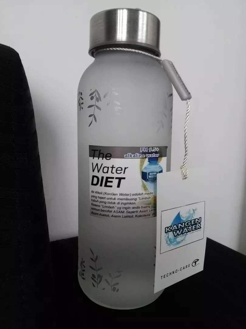 The water diet by kangen water ph 10 0