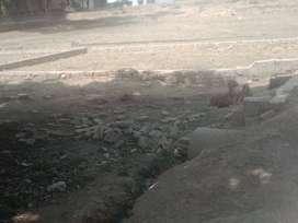 bhawanipur pisaur