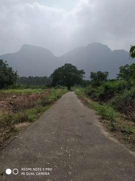 SPK nagar well developed area