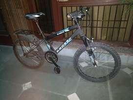 Kross Globate Kids cycle