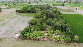 DELHI PROPERTY 6 ACRE + AGRICULTURE LAND WITH 2.5 ACRE FARM PASSED
