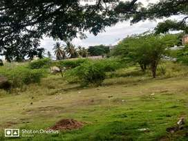 Site sale in KHB colony Channapatna Ramanagar distic