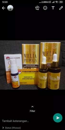 Obat herbal PROPOLIS dan MELIA BIANG