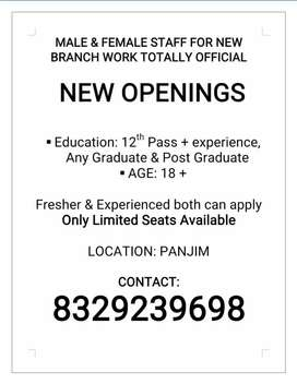 Urgently required candidates fr official work as promotional executive