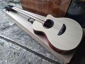 Gitar akustik elektrik apx naturql