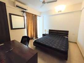 1bhk furnished flat for rent in edachira kakkanad kochi