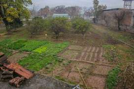Plot Nubr 1349 I/12/3 for sale serious buyer need