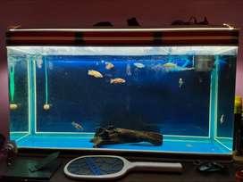 4feet Sobo Aquarium