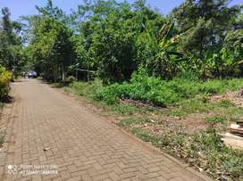 Tanah SHM Murah bebas banjir di belakang Sabhara & BSB Mijen Semarang