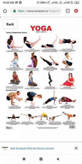 Yoga classes  (home services for ladies also available)