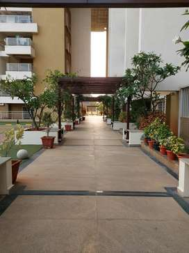 Premium Lavish 3Bhk Flat For Sale In Kanakpura Road