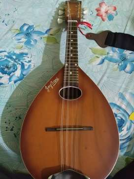Joybani Mandolin (only 2month old)