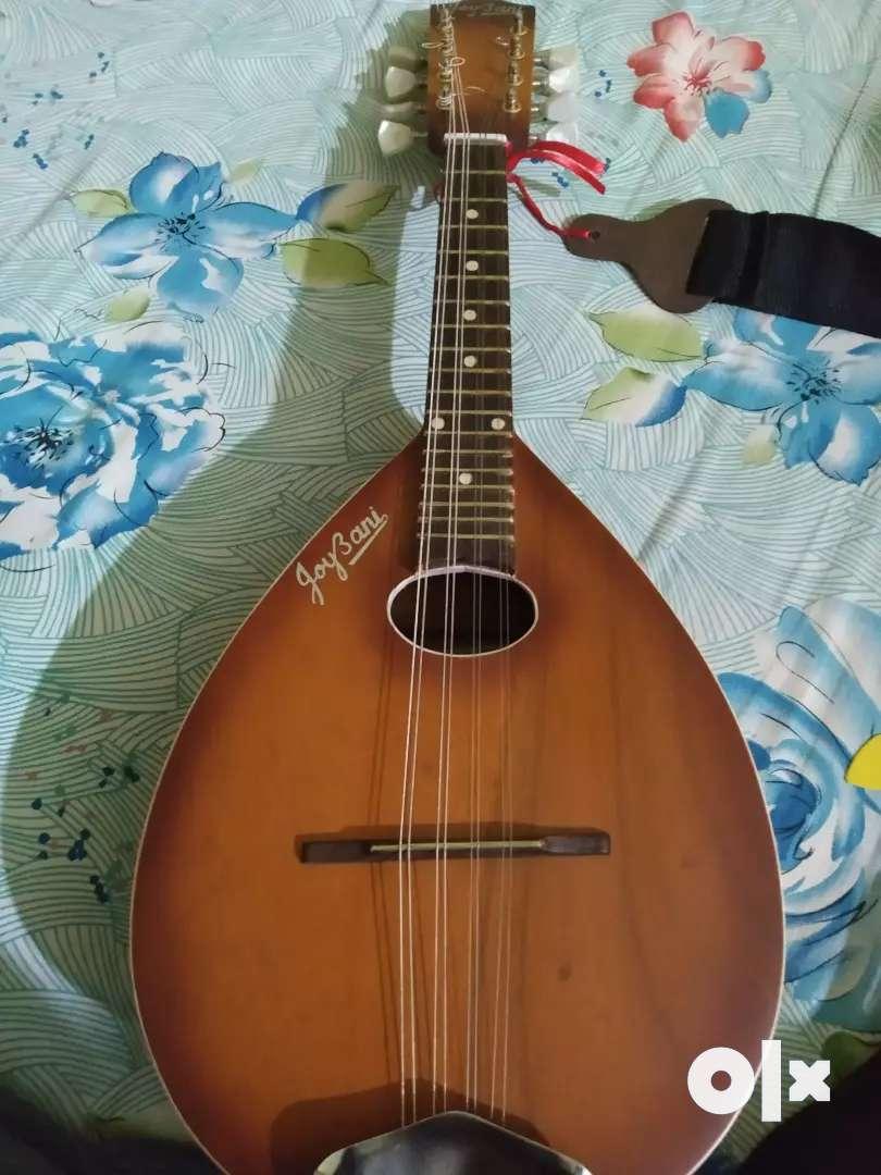 Joybani Mandolin (only 2month old) 0