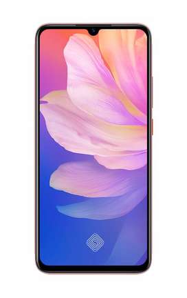 Vivo S1 Pro  ON EASY INSTALLMENTS