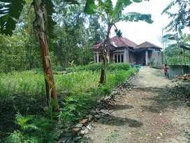 Rumah dan tanah di desa jarum bayat