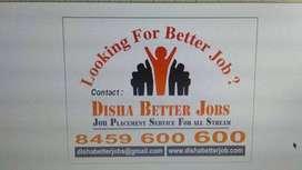 E-Commerce cum Accountant (F) Req. in Co. at Pitampura, Delhi. Exp: 2-