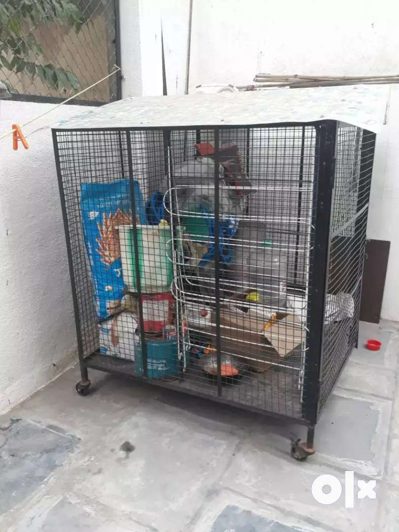 5 by 5 dog cage for sale in cheapest rate & good condition 0