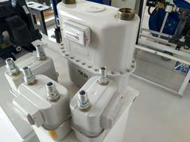 Industrial Diaphgram Gas Meter
