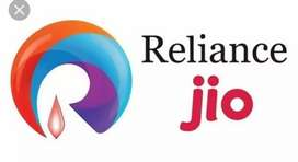 Jio company required a receptionist