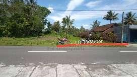 Tanah Murah Pinggir Jalan Agrowisata dekat Pasar Ngablak, Turi