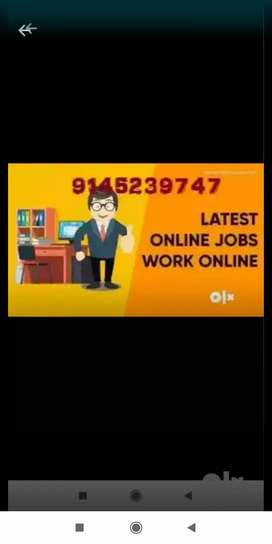 We are all government registered we are providing online job