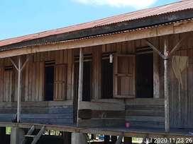 86 Hektar Tanah perkebunan kelapa sawit