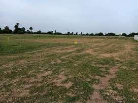 Maraimalai nagar near dtcp approved plot available