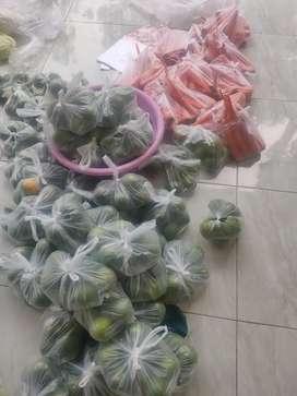 Sayuran segar pacet