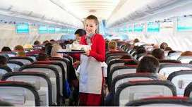 Flight Attendant Staff fresher