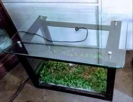 Teapoy Aquarium
