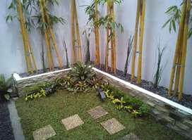 Ahli dekorasi taman rumah-taman halaman rumah-taman minimalis