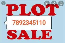 1050 sft shahu Nagar (plot.)
