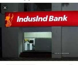 Individual bank chp