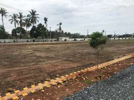 Ready to Constructed Plots Available at Allipuram