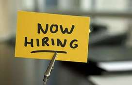 Wanted Front Office Executive