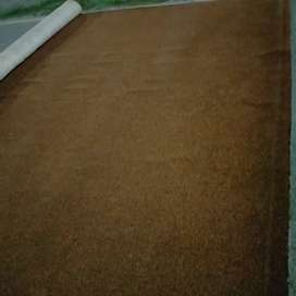 Carpet 14'X14' with thick under coat