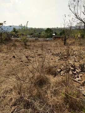 Forest khopat land for sale.