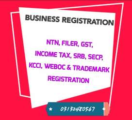 Tax Accountant ( Income tax Return Filling )