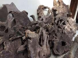 Hiasan dinding akar batang kayu jati antik