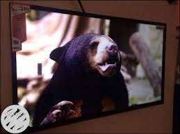 """with 4k uhd 55"""" sony panel smart android"""