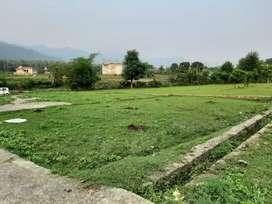 7 Biswa Plot in Kisanpuri