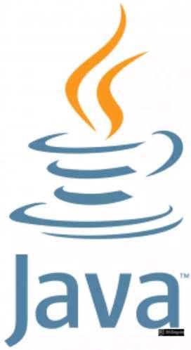 DevOps, Java full stack, frontend, scrum master, Automation engineer,